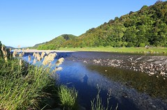 Early Morning Hutt River (kiwi photo lover) Tags: upperhutt huttriver huttriverreserve huttrivertrail riverbank recreation walking running biking swimming fishing morning sunrise nativegrasses toetoe shadows blue green