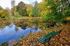 Sit down and have a look around (Tobi_2008) Tags: herbst autumn teich pond blätter leaves bäume trees sachsen saxony deutschland germany allemagne germania