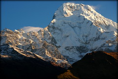 Annapurna from Tadapani (Nepal) (armxesde) Tags: ricoh pentax k3 himalaya nepal mountain berg snow schnee sunrise sonnenaufgang tadapani annapurna