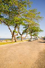 DSC_6988_edited (Proflázaro) Tags: brasil nordeste bahia cidade portoseguro orla calçada calçamento avenida árvore veículo carro céu paisagem paisagemurbana paisagemnatural paisagemdabahia paisagemdobrasil natureza naturezadabahia naturezadonordeste naturezadobrasil naturezadeportoseguro ecologia nikon nikond3100