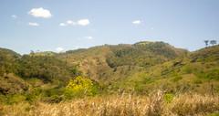 DSC_7011_edited (Proflázaro) Tags: brasil nordeste bahia montanha viagem viagempelonordeste viagempelabahia floresta montanhadabahia céu nuvem verde azul branco árvore paisagem paisagemnatural paisagemdabahia paisagemdonordeste paisagemdobrasil natureza naturezadabahia naturezadonordeste naturezadobrasil ecologia nikon nikond3100