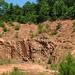 Saprolite (Pine Ridge West quarry, Surry County, North Carolina, USA) 3