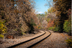 Autumn Train Tracks (Eyes Open To Life) Tags: autumn fall foliage traintracks tracks trees nature landscape vermont