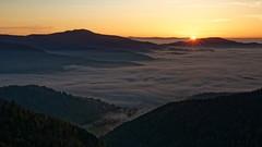 Drumont - Oct 19 - 083 (sebwagner837_55) Tags: drumont vosges lorraine alsace vallée thur haut rhin hautrhin grand est grandest france ballon lever soleil belchen blauen forêt noire schwarzwald