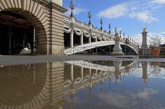 Pont Alexandre III (hervétherry) Tags: france iledefrance paris 75008 canon eos 7d efs 1022 pont bridge alexandre iii reflet reflection reflexion