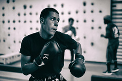 Club de boxe, Gymnase Maurice Baquet, Pantin (johann walter bantz) Tags: boxeanglaise gymnase documentaire documentary blackwhite monochrome 55mm zeiss sonyilce7rm3 sportphotography sport entraînement training fitness 93 banlieueparisienne france clubdeboxe