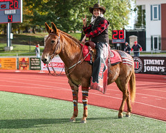 2019_UCMvPittState_FB-250 (Mather-Photo) Tags: actionphotography andrewmather andrewmatherphotography centralmissouri centralmissourimules collegefootball eventphotography football footballphotography freelancephotographer kcphotographer kansascityphotographer miaa makeityours matherphoto missouri mules mulesfootball ncaa ncaad2 ncaadii ncaadivisionii ncaa2 ncaaii photography photojournalism sports sportsphotographer sportsphotography teamucm ucm ucmathletics ucmfootball ucmmules ucmmulesfootball ucmo universityofcentralmissouri universityofcentralmissouriucm