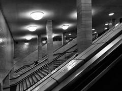 Underground impressions from Alexanderplatz (ANBerlin [Ondré]) Tags: struktur structure strasenfotografie streetphotography innen inside indoor ausergewöhnlich extraordinary weilwirdichlieben einfarbig monochrome biancoenero noiretblanc schwarzweis blackwhite sw bw rahmen frame linien lines schatten shadow licht lights reflexion reflection fliesen tiles säulen columns pfeiler pillars rolltreppen escalators treppenhaus stairway staircase stairwell treppe stairs unterführung underpass untergrund underground bauwerk building architektur architecture infrastruktur infrastructure bahnhof station bahnsteig platform ubahn metro subway deutschland germany berlin mitte alexanderplatz anb030 shotoniphone iphotography iphonography 8plus iphone8 iphone apple