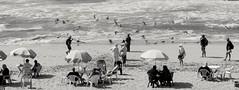 Sunday at the beach Oualidia Marocco People and birds (NICOLAS BELLO) Tags: oualidia maroc marocco bird birds beach beaches blackandwhite baw noiretbalnc people noiretblanc
