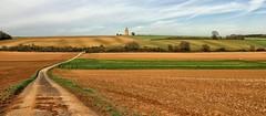 Schaafheim (wernerfunk) Tags: landschaft weg strasse hessen