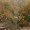 Autumn Leaves in Niigata (seiji2012) Tags: japan niigata okutadami river 奥只見 紅葉