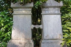 Eternal Friendship (All Saint's Day) (Mike Y. Gyver ( Back after an healthy break )) Tags: mygphotographiewixsitecommyg2017 myg mood graveyard cemetery graves green 2019 tombstone frienship toussaint allsaintsday d90 nikonafsdxnikkor18105mm3556g outdoor uccle brussels belgium dieweg