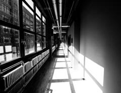Long Corridor (MassiveKontent) Tags: hallway pipes industrial corridor montreal bw contrast city monochrome urban blackandwhite streetphoto metropolis montréal quebec photography bwphotography streetshot architecture shadows noiretblanc blancoynegro building windows perspective absoluteblackandwhite mono