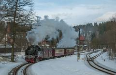 HSB 99.6001 Alexisbad 26/02/2010 (stefano.trionfini) Tags: train treni bahn zug dampf steam dr hsb br99 selketalbahn harz sassoniaanhalt germania