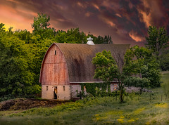 Notice Me (henryhintermeister) Tags: barns minnesota oldbarns clouds farming countryliving country sunsets storms sunrises pastures nostalgia skies outdoors seasons fields hay silos dairybarns building architecture outdoor winter serene grass landscape plants cloudsstormssuns mankatomn