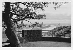 Vienna (doc-harvey) Tags: wien vienna donau hwschlaefer docharvey analog analogue bw bwfp blackandwhite blancetnoir film kodak trix400 tx400 leica m3 summicron50dr river tree view landscape scanfromprint