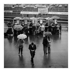 FILM - A day at the races (fishyfish_arcade) Tags: 35mm 800asa analogphotography bw blackwhite blackandwhite doncasterracecourse filmphotography filmisnotdead hp5 istillshootfilm monochrome olympusom1 analogcamera fzuiko50mmf18 film ilford mono rain umbrella