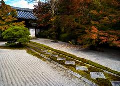 Tenju-an garden (Tim Ravenscroft) Tags: path moss foliage fall autumn tenjuan nanzenji zen gravel garden kyoto japan japanese hasselblad hasselbladx1d