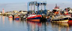 Serie Marine - port du Guilvinec (christophe.laigle) Tags: bretagne christophelaigle finistère fuji guilvinec xf90mm boats bâteaux bâteauxdepêche couleurs marine port