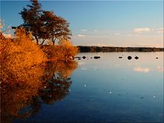 Autumn at the Great  Ploener Lake (Ostseetroll) Tags: deu deutschland geo:lat=5413647019 geo:lon=1041018298 geotagged plön prinzeninsel schleswigholstein herbst autumn plönersee lakeploen spiegelungen reflections olympus em5markii