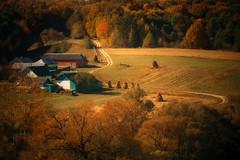 autumn in rural ... (proffkom_) Tags: ukraine bukovina rural countryside vintage village nature autumn sigma ctober hut farm forest
