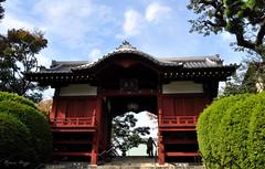 Entering Gokoku-ji (DameBoudicca) Tags: tokyo tokio 東京 japan nippon nihon 日本 japón japon giappone gokokuji 護国寺 buddhisttemple buddhisttempel templosbudistas templesbouddhistes 寺 temple tempel tempio templo buddhism buddhismus budismo bouddhisme buddhismo 仏教 shingon 真言宗