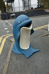 Dolphin rubbish bin DSC07863 (rowchester) Tags: dolphin rubbish bin