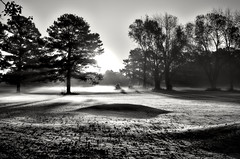 Morning golf course. (ToddGraves2) Tags: