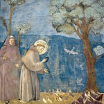 35d Джотто Проповедь птицам Сан-Франческо,Ассизи 1296-1304
