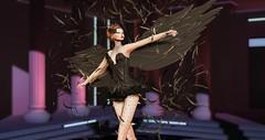 Black Swan (vickyemeresident1) Tags: angels kristan