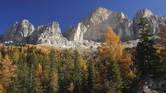 585201910bTIRES_077 (GIALLO1963) Tags: europe italy altoadige sudtiröl dolomiti dolomites dolomiten rosengarten catinaccio canoneosr alps landscapes ngc nature fall autumn mountains