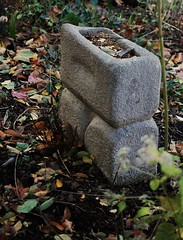 Once a marble step in Baltimore (mdhwrites@verizon.net) Tags: cf19 stone