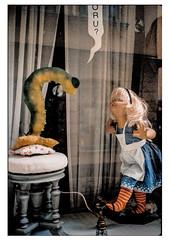 (schlomo jawotnik) Tags: 2019 oktober stockholm schweden gamlastan altstadt schaufenster schlomostierwelt raupe kind spookie vorhang hocker ringelsocken schürze analog film kodak kodakproimage100 usw