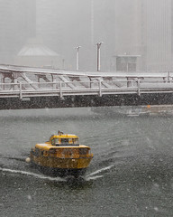 Halloween in Chicago (Kenny C Photography) Tags: halloween chicago downtownchicago windycity snow snowing snowy fallcolors fallinchicago fall chicagobridges enjoyillinois illinois 2019 midwest snowfall water taxi boat chicagoriver river