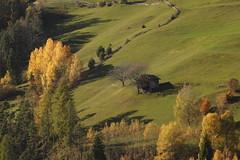 585201910bTIRES_171 (GIALLO1963) Tags: europe italy altoadige sudtiröl dolomiti dolomites dolomiten rosengarten catinaccio canoneosr alps landscapes ngc nature fall autumn mountains