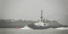 ASD TUG 2811 PIONEER (kees torn) Tags: asdtug2811 damenshipyard tug hoekvanholland nieuwewaterweg