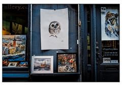 (schlomo jawotnik) Tags: 2019 oktober stockholm schweden gamlastan altstadt schaufenster schlomostierwelt eulen analog film kodak kodakproimage100 usw