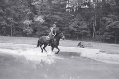Cross-country Schooling 06 (Derek R Goulet) Tags: horse horses animals equine crosscountry schooling equestrian sports saddle course massachusetts outdoors 35mm film bw blackandwhite pentax pentaxk1000 walk trot canter gallop jumps jump gelding