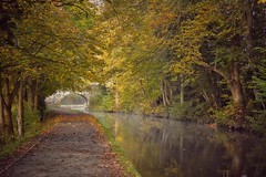 Llangollen Canal (Nige H (Thanks for 25m views)) Tags: nature landscape canal water bridge wales llangollen llangollencanal autumn fall trees autumnleaves autumncolour