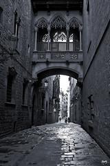 Carrer del Bisbe (svet.llum) Tags: barcelona catalunya cataluña barriogótico calle ciudad arquitectura bn luz llum