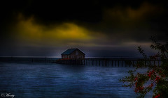 The boathouse Garibaldi harbor Oregon, USA (concho cowboy) Tags: garibaldi oregon unitedstatesofamerica boathouse