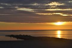Sunrise November 1 - Amanecer 1 de noviembre (En memoria de Zarpazos, mi valiente y mimoso tigre) Tags: sea sunrise sun seascape seagull seashore skyfire skyred clouds breakwater mar amanecer sol playa beach spiaggia gaviota nubes cielorojizo sole mare alba nubole cielorosso alicante campello nikon