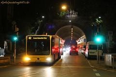 Bunte Buswelt - Stuttgart (apfelpudding) Tags: stuttgarterstrasenbahnen ssb stuttgart vvs badenwürttemberg öpnv nahverkehr publictransport urbanmobility bus autobus omnibus linienbus mercedesbenz citaro mercedesbenzcitaro gelenkbus
