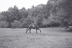 Cross-country Schooling 04 (Derek R Goulet) Tags: horse horses animals equine crosscountry schooling equestrian sports saddle course massachusetts outdoors 35mm film bw blackandwhite pentax pentaxk1000 walk trot canter gallop jumps jump gelding