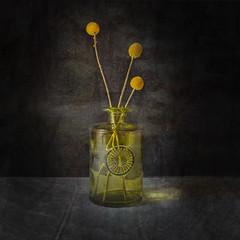One Green Bottle (Marion McM) Tags: bottle glass green flowers driedflowers textures light art fineart canoneos6dmk11 2019 stilllife