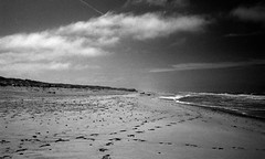 Lonely beach (Rosenthal Photography) Tags: dänemark asa400 20190907 ff135 kleinbildformat urlaub analog epsonv800 houvig ilfordrapidfixer washiz400 olympus35rd nordsee rodinal12521°c7min lonelybeach beach strand coast denmark summer august sea northsea landscape seascape beachscape olympus mood olympus35 35rd fzuiko zuiko 40mm f17 washi filmwashi washiz redfilter filter rodinal ilford rapid fixer epson v800