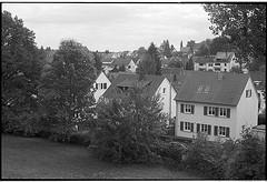 fm2_20_30 (Ghostwriter D.) Tags: germany saarland nikonfm2 blackandwhite blackwhite stingbert