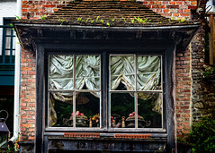 A classic view in and a classic view outA pretty window along the canal (Brett of Binnshire) Tags: ferns building art westflanders on1raw manipulations belgium bruges plants locationrecorded house roof architecture stilllife window fruit hotel timbered inn