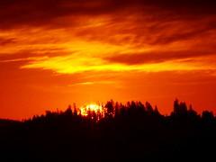 A blazing Halloween Day sunrise (peggyhr) Tags: peggyhr sunrise silhouettes sun sky clouds dsc09977a vancouver bc canada heartawards rainbowofnaturelevel1red carolinasfarmfriends