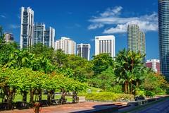 KLCC park with skyline in Kuala Lumpur, Malaysia (UweBKK (α 77 on )) Tags: malaysia southeast asia sony alpha 550 dslr kualalumpur kuala lumpur klcc city urban center centre skyline park garden bush tree building skyscraper sky